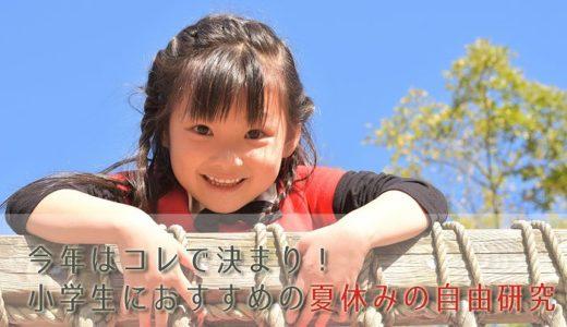 【1日で終わる!】小学生男の子にも女の子にもおすすめの自由研究はコレ!【夏休み】